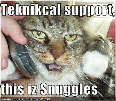funny-pictures-technical-support-cat
